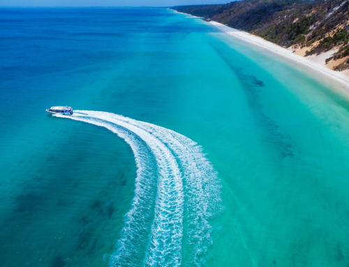 Get ready to seas the day with Kingfisher Bay Resort's new Eco Marine cruise