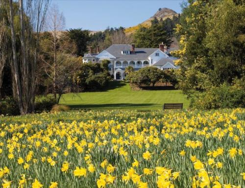 Experience Otahuna Lodge like Royalty with 'Lord of the Manor' Package